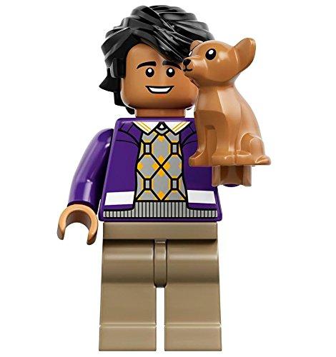 Raj und Cinnamon als Lego-Figur