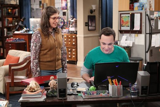 Amy und Sheldon am Laptop