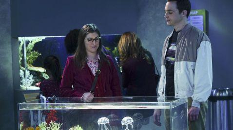Sheldon und Amy treffen aufeinander