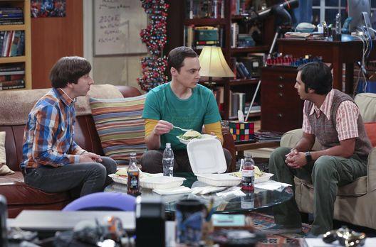 Raj und Howard sollen Sheldon helfen eine neue Freundin zu finden
